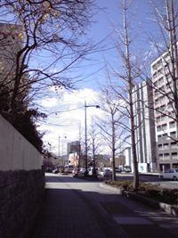 2008122611200000.jpg